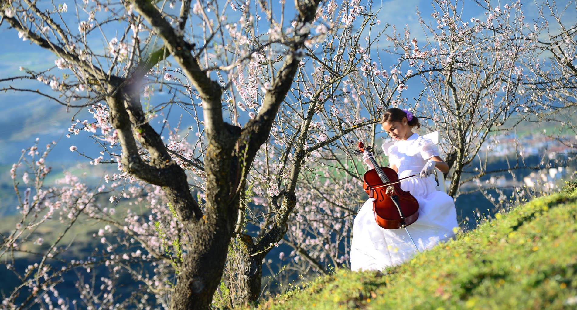 reportajes comunion con violin