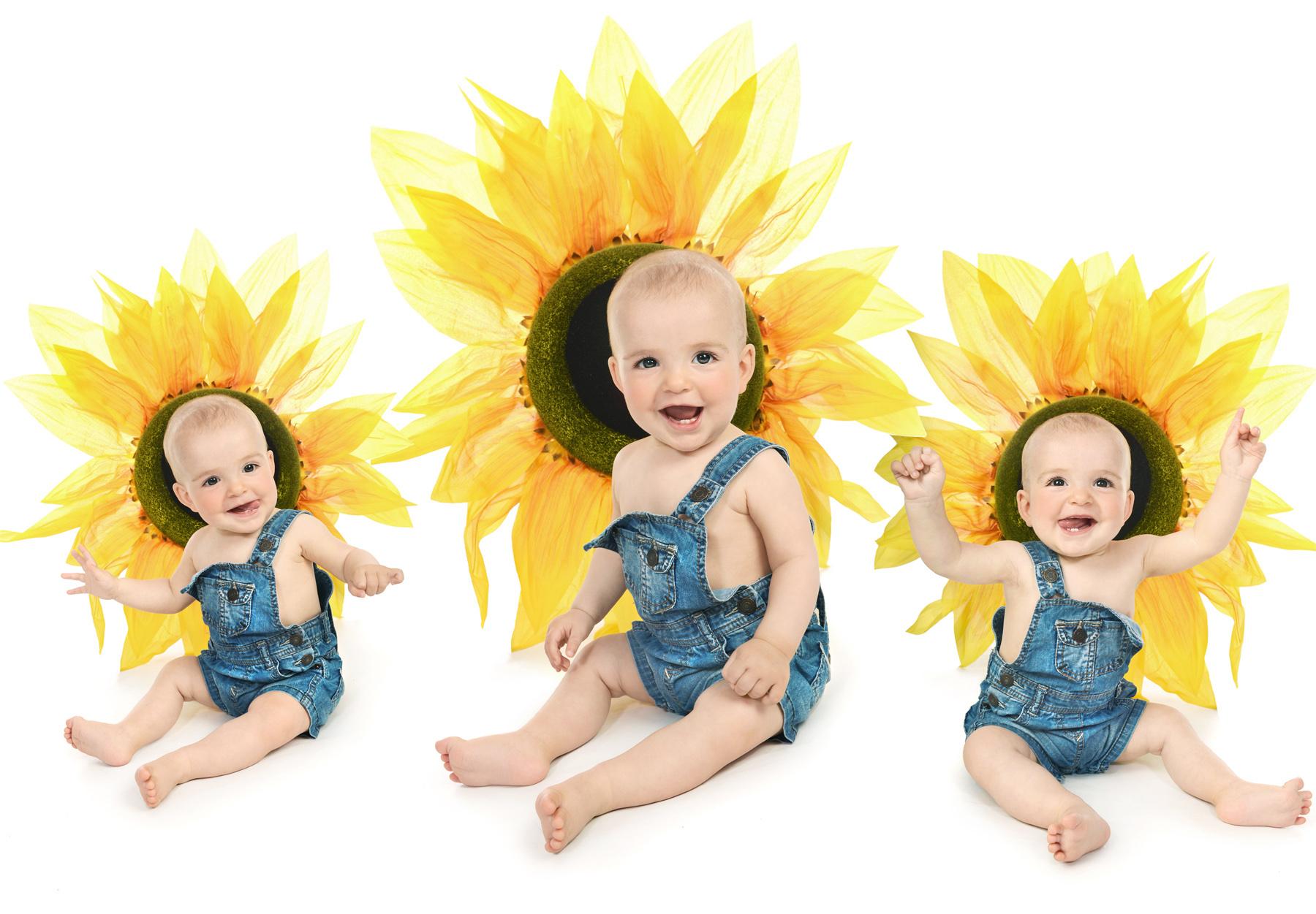 Girasoles fotos bebes malaga